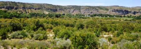 Vistas-al-parque-desde-el-Hotel_destacada